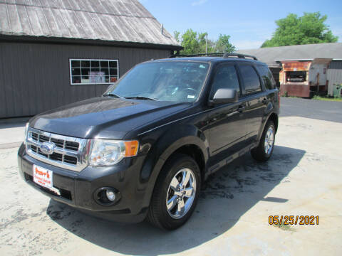 2012 Ford Escape for sale at Burt's Discount Autos in Pacific MO