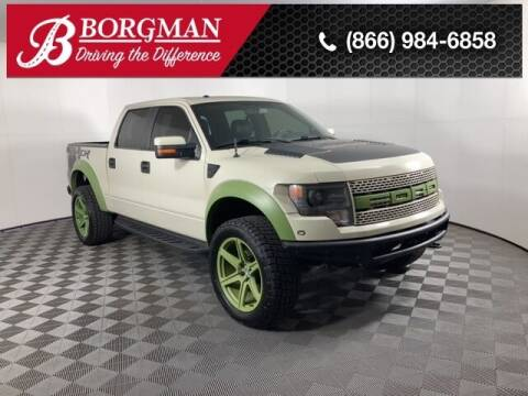 2013 Ford F-150 for sale at BORGMAN OF HOLLAND LLC in Holland MI
