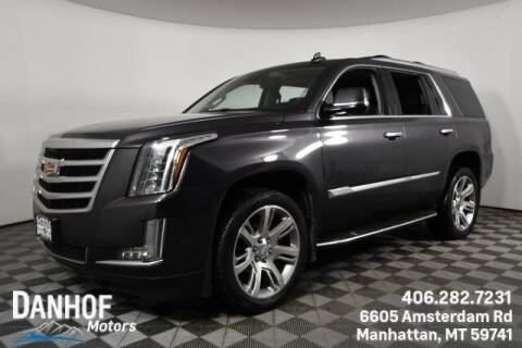 2017 Cadillac Escalade for sale at Danhof Motors in Manhattan MT