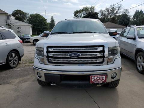 2013 Ford F-150 for sale at Buena Vista Auto Sales in Storm Lake IA