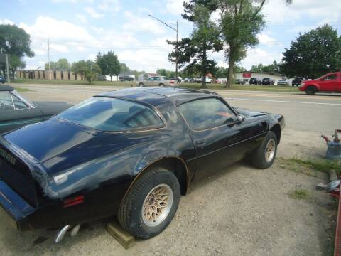 1979 Pontiac Firebird Trans Am for sale at Marshall Motors Classics in Jackson Michigan MI
