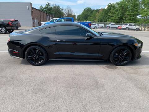 2015 Ford Mustang for sale at St. Louis Used Cars in Ellisville MO