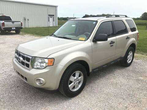 2011 Ford Escape for sale at Nice Cars in Pleasant Hill MO
