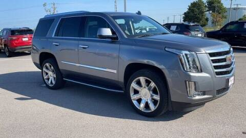 2019 Cadillac Escalade for sale at Napleton Autowerks in Springfield MO