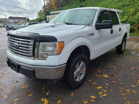 2010 Ford F-150 for sale at North Knox Auto LLC in Knoxville TN
