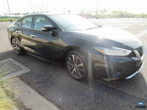 2019 Nissan Maxima for sale at MyAutoJack.com @ Auto House in Tempe AZ