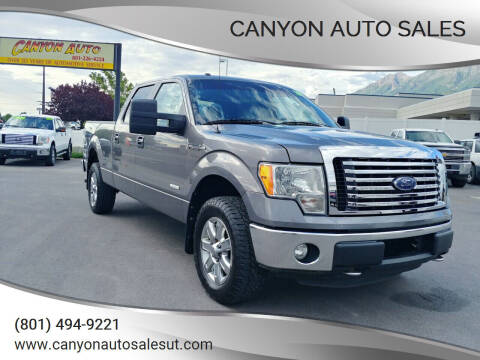 2014 Ford F-150 for sale at Canyon Auto Sales in Orem UT
