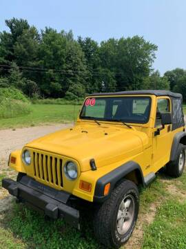 2000 Jeep Wrangler for sale at Hillside Motor Sales in Coldwater MI