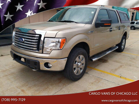 2012 Ford F-150 for sale at Cargo Vans of Chicago LLC in Mokena IL