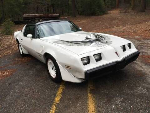 1981 Pontiac Firebird for sale at Classic Car Deals in Cadillac MI