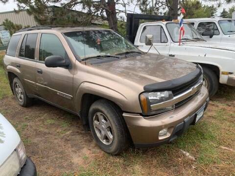 2003 Chevrolet TrailBlazer for sale at Four Boys Motorsports in Wadena MN