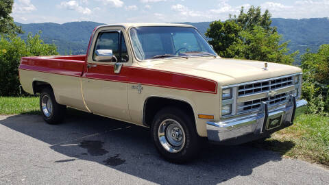 1985 Chevrolet C/K 10 Series for sale at Rare Exotic Vehicles in Weaverville NC