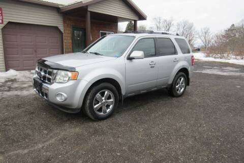 2009 Ford Escape for sale at Clearwater Motor Car in Jamestown NY