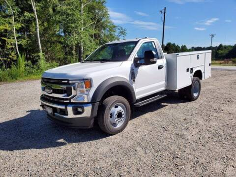 2020 Ford F-450 Super Duty for sale at Loganville Ford Fleet Sales in Loganville GA