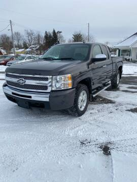 2010 Chevrolet Silverado 1500 for sale at SVS Motors in Mount Morris MI