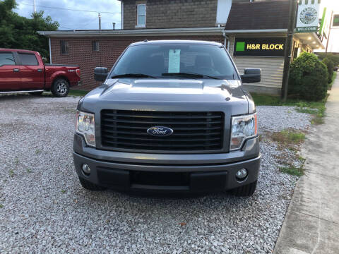 2014 Ford F-150 for sale at ADKINS PRE OWNED CARS LLC in Kenova WV