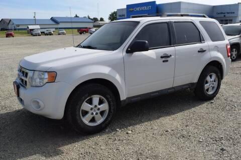 2010 Ford Escape for sale at Tripe Motor Company in Alma NE