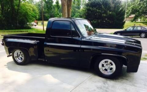 1979 Chevrolet C/K 20 Series for sale at Classic Car Deals in Cadillac MI