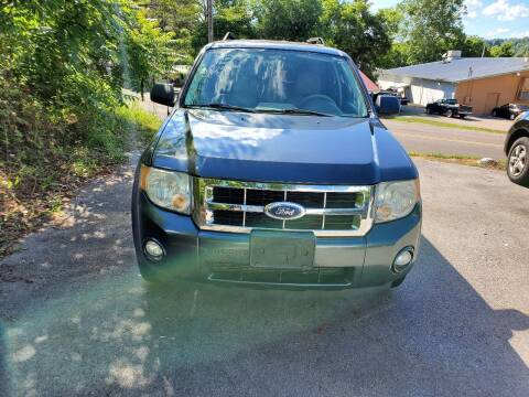 2008 Ford Escape for sale at DISCOUNT AUTO SALES in Johnson City TN