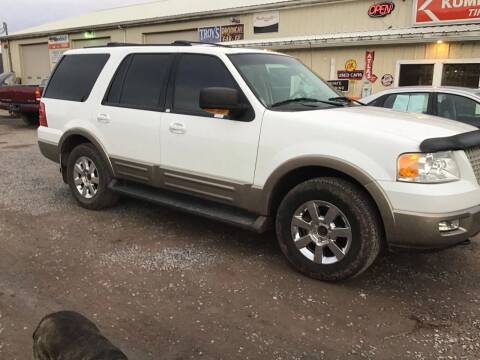 2003 Ford Expedition for sale at Troys Auto Sales in Dornsife PA