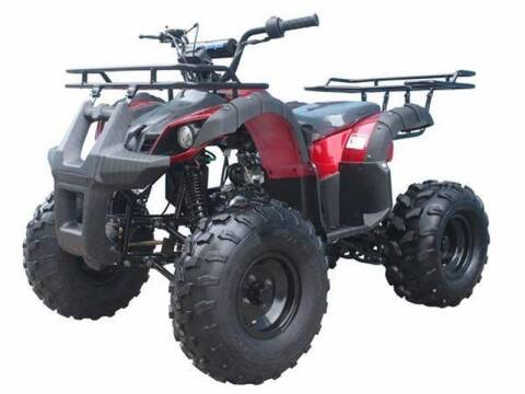 2020 Tao T Force for sale at Buhs Auto Sales in Kenosha WI