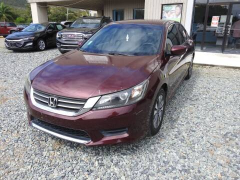 2013 Honda Accord for sale at Caribbean Auto Mart -C in St Thomas VI