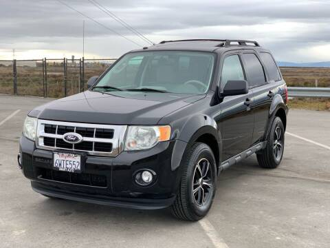 2012 Ford Escape for sale at ELYA MOTORS in Newark CA