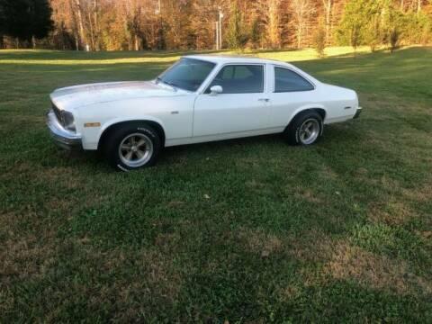 1977 Chevrolet Nova for sale at Classic Car Deals in Cadillac MI