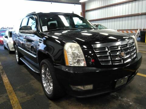 2008 Cadillac Escalade ESV for sale at MOUNT EDEN MOTORS INC in Bronx NY