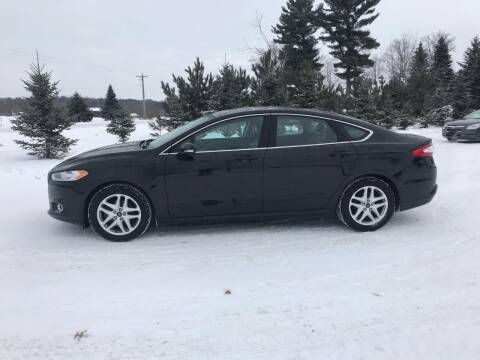 2013 Ford Fusion for sale at BLAESER AUTO LLC in Chippewa Falls WI