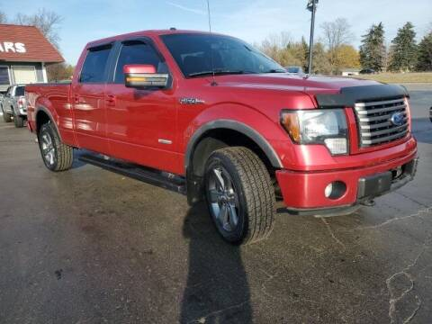 2012 Ford F-150 for sale at Newcombs Auto Sales in Auburn Hills MI