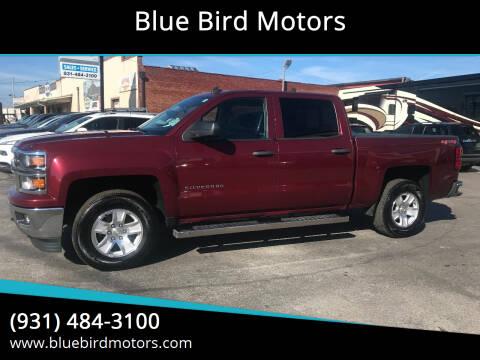 2014 Chevrolet Silverado 1500 for sale at Blue Bird Motors in Crossville TN