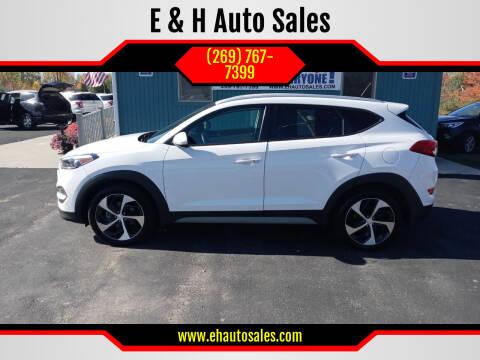 2017 Hyundai Tucson for sale at E & H Auto Sales in South Haven MI
