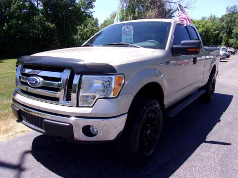 2010 Ford F-150 for sale at American Auto Sales in Forest Lake MN