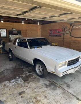 1981 Chevrolet Monte Carlo for sale at Classic Car Deals in Cadillac MI