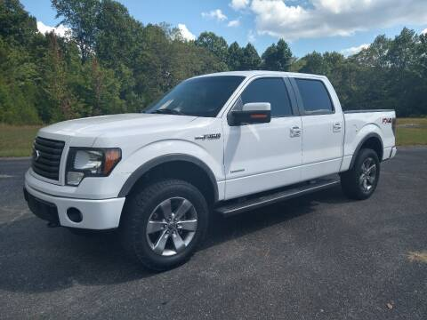 2012 Ford F-150 for sale at CARS PLUS in Fayetteville TN