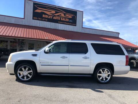 2007 Cadillac Escalade ESV for sale at Ridley Auto Sales, Inc. in White Pine TN