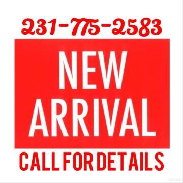 2019 Dodge Grand Caravan for sale at DON'S ADOPT A CAR in Cadillac MI