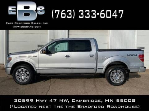 2013 Ford F-150 for sale at East Bradford Sales, Inc in Cambridge MN