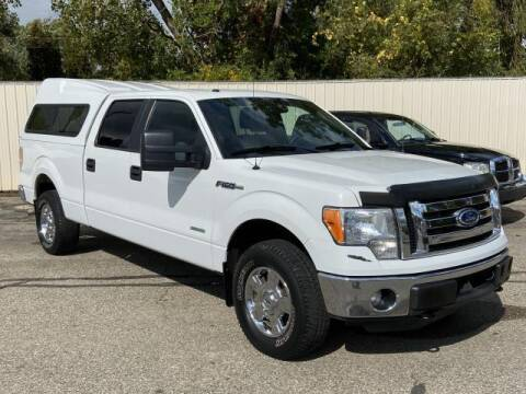 2012 Ford F-150 for sale at Miller Auto Sales in Saint Louis MI