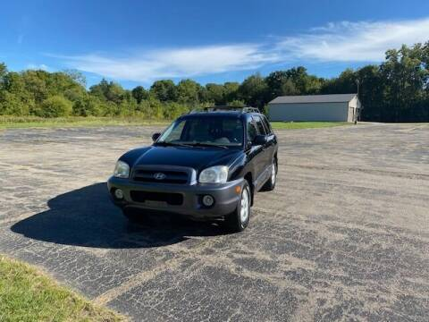 2005 Hyundai Santa Fe for sale at Caruzin Motors in Flint MI