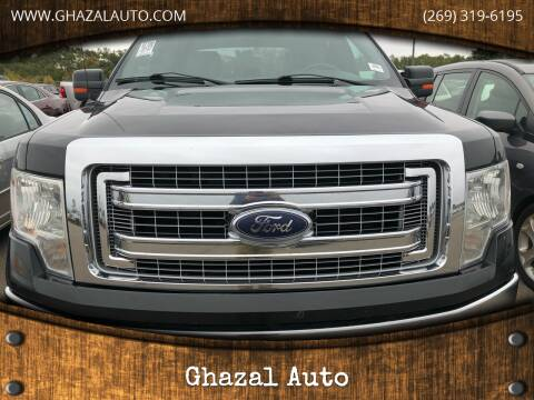 2013 Ford F-150 for sale at Ghazal Auto in Sturgis MI