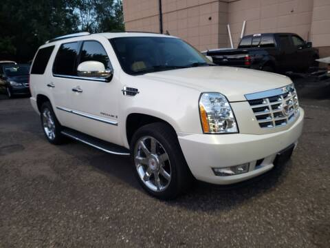 2009 Cadillac Escalade for sale at Fleet Automotive LLC in Maplewood MN