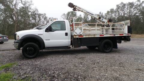 2006 Ford F-550 Super Duty for sale at action auto wholesale llc in Lillian AL
