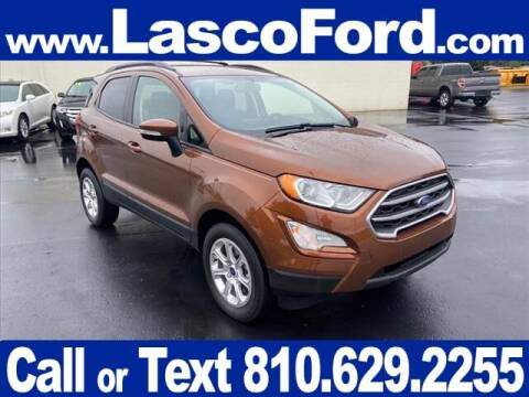 2019 Ford EcoSport for sale at Lasco of Grand Blanc in Grand Blanc MI