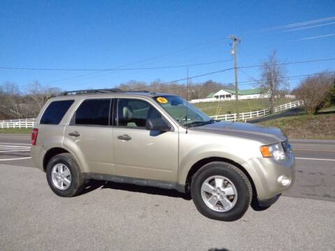 2011 Ford Escape for sale at Car Depot Auto Sales Inc in Seymour TN