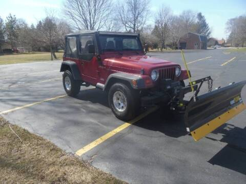 1997 Jeep Wrangler for sale at Classic Car Deals in Cadillac MI