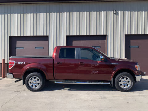 2009 Ford F-150 for sale at Dakota Auto Inc. in Dakota City NE