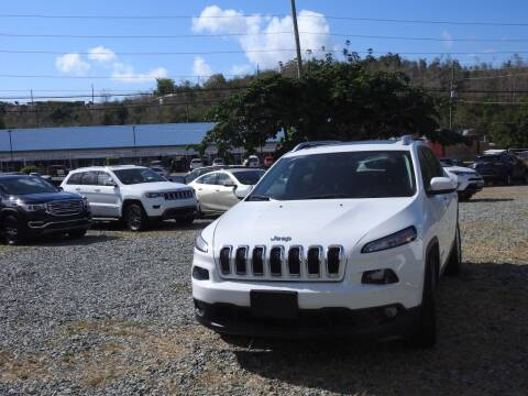 2015 Jeep Cherokee for sale at Caribbean Auto Mart -C in St Thomas VI