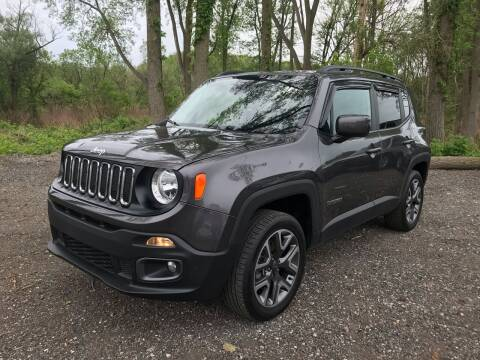 2017 Jeep Renegade for sale at GABBY'S AUTO SALES in Valparaiso IN